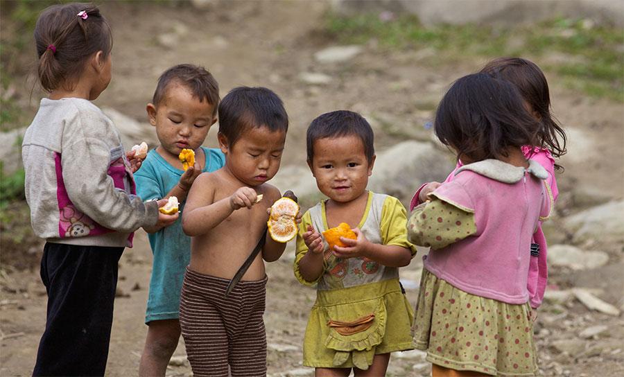 The Vietnam Relief Effort